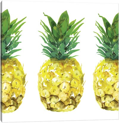 Triple Pineapples  Canvas Art Print