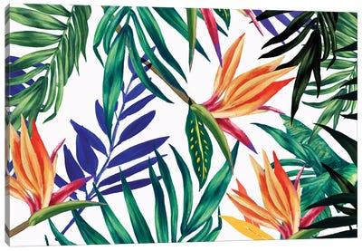 Tropical Foliage  Canvas Art Print