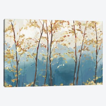 Ascent Trail  Canvas Print #ZEE293} by Isabelle Z Canvas Print