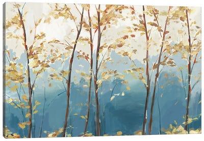 Ascent Trail  Canvas Art Print