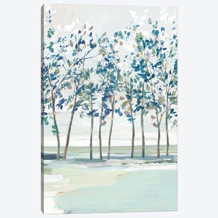 Blue Ridge I  Canvas Print #ZEE297} by Isabelle Z Canvas Wall Art