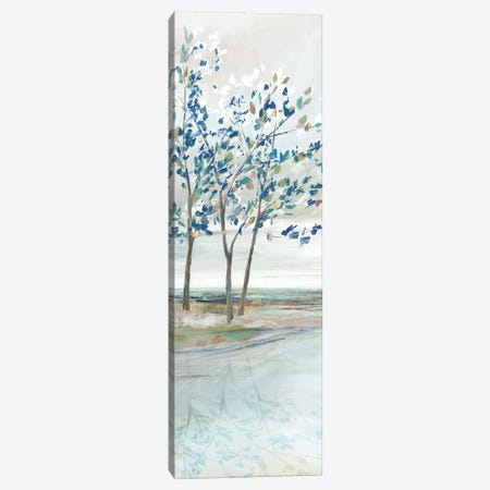 Blue Ridge III   Canvas Print #ZEE299} by Isabelle Z Canvas Print