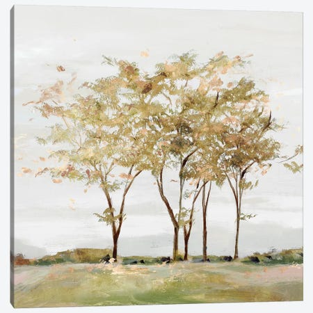 Golden Acre Wood  Canvas Print #ZEE319} by Isabelle Z Canvas Art