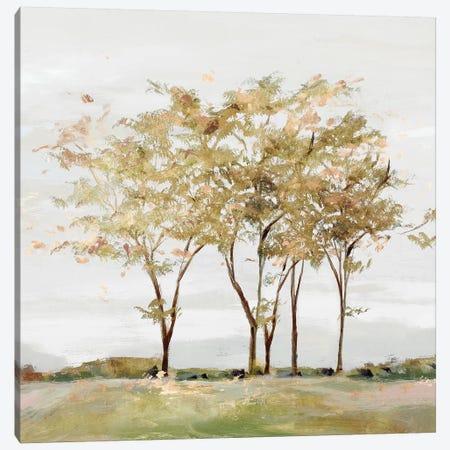 Golden Acre Wood  Canvas Print #ZEE319} by Isabelle Z Canvas Art