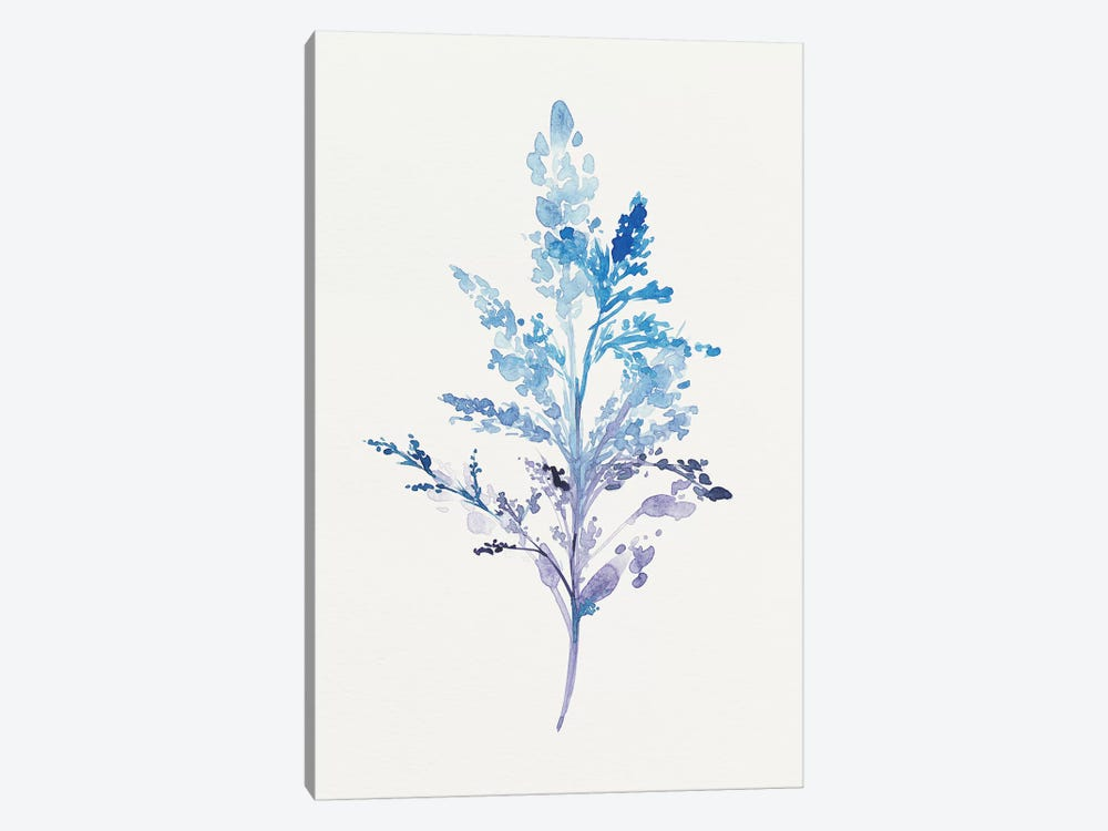 Whimsical Botanical II by Isabelle Z 1-piece Canvas Wall Art