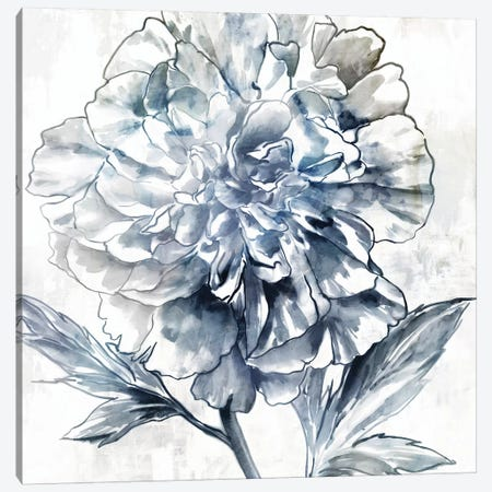 Japanese Peony II Canvas Print #ZEE397} by Isabelle Z Canvas Print