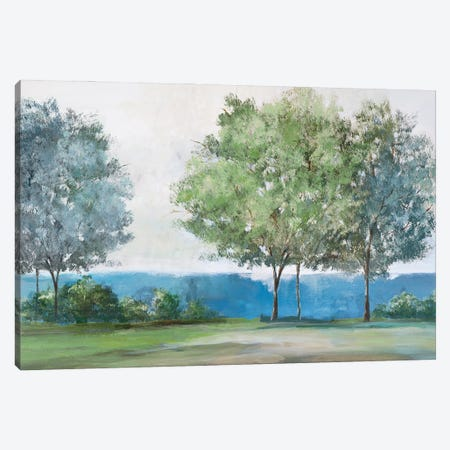 Calming View Canvas Print #ZEE451} by Isabelle Z Canvas Art Print