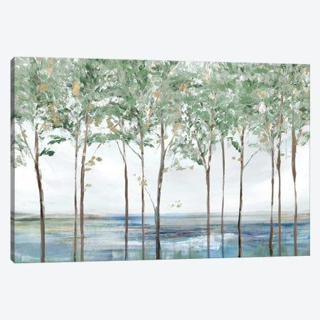 Forest Peak Canvas Print #ZEE459} by Isabelle Z Canvas Art Print