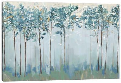 Spirit of Harmony Canvas Art Print