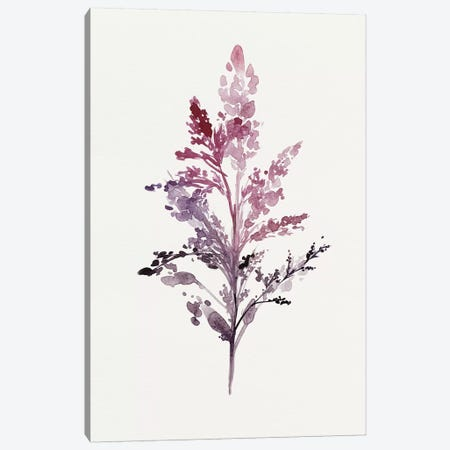 Botanical II Canvas Print #ZEE4} by Isabelle Z Art Print