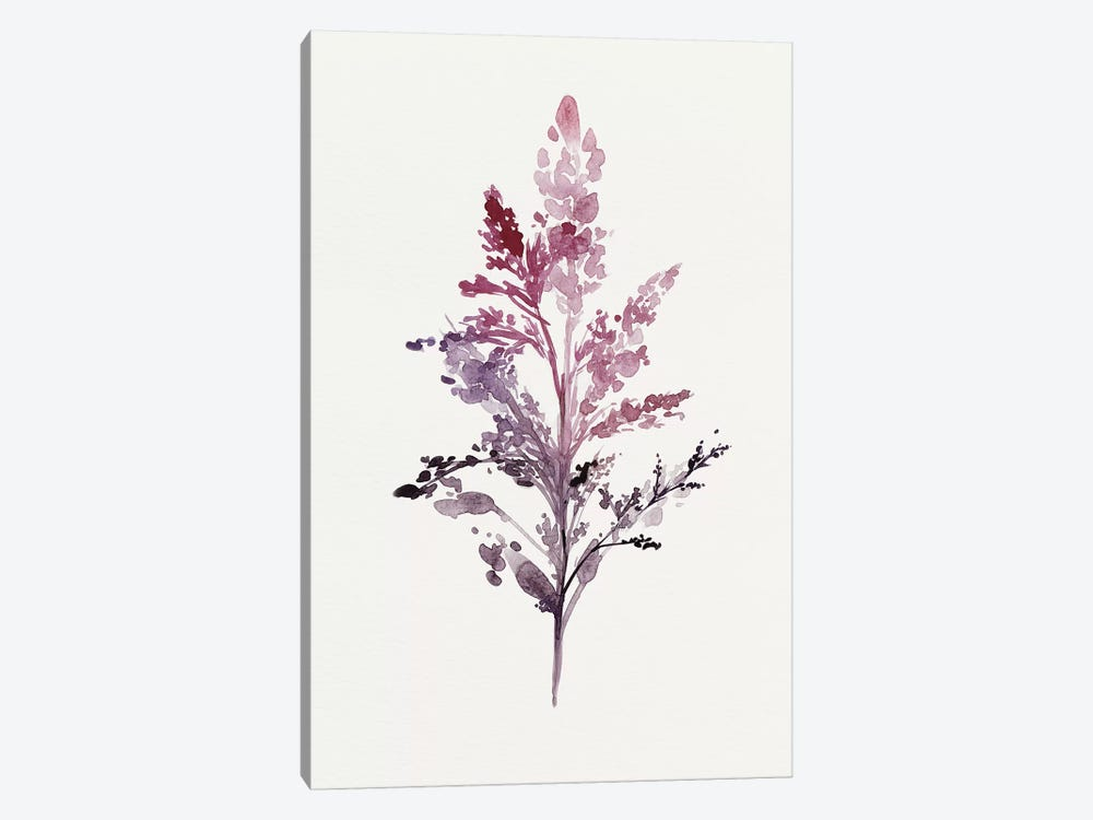 Botanical II by Isabelle Z 1-piece Art Print
