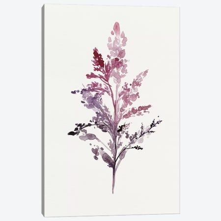 Botanical II Canvas Print #ZEE4} by Isabelle Z Art Print