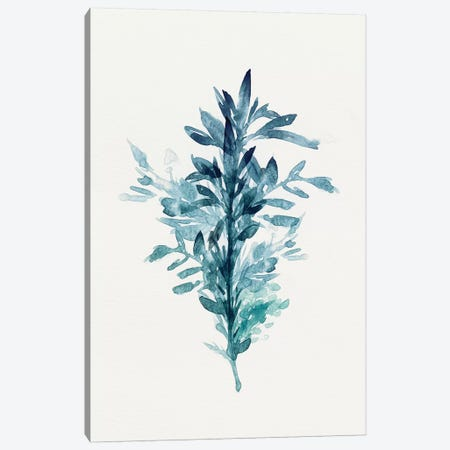 Botanical III Canvas Print #ZEE5} by Isabelle Z Canvas Print