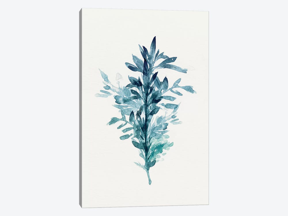 Botanical III by Isabelle Z 1-piece Canvas Wall Art