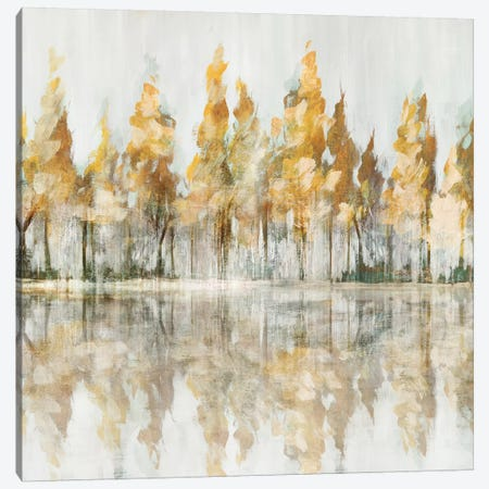 Across the Narrow Lake Canvas Print #ZEE73} by Isabelle Z Canvas Art