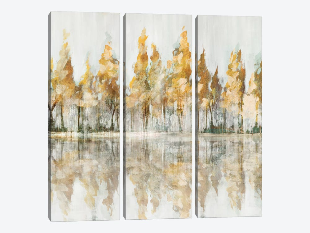 Across the Narrow Lake by Isabelle Z 3-piece Canvas Wall Art