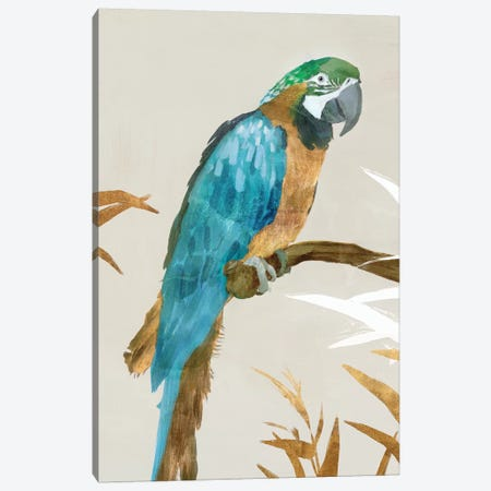 Blue Parrot I Canvas Print #ZEE91} by Isabelle Z Canvas Art
