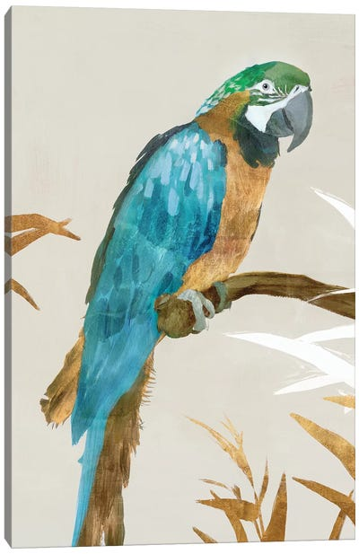 Blue Parrot I Canvas Art Print