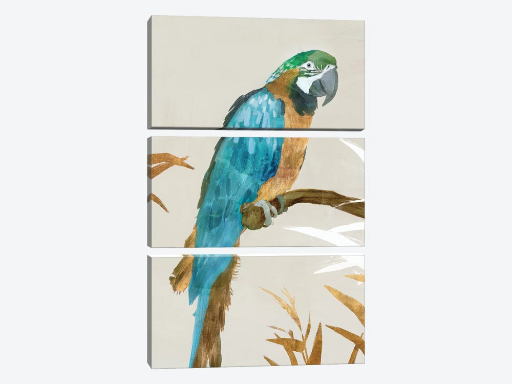 Blue Parrot I by Isabelle Z 3-piece Canvas Artwork