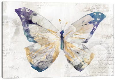 Butterfly Effect I  Canvas Art Print