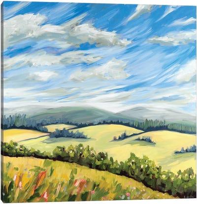 Wildeflower Meadow Canvas Art Print