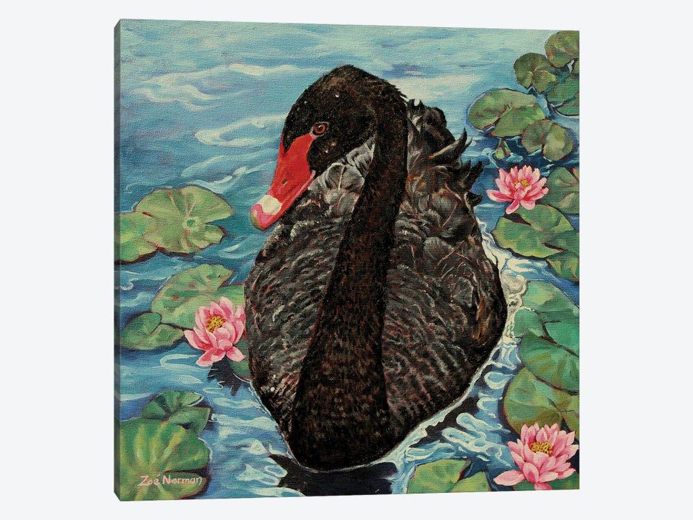 Black Swan. by Zoe Elizabeth Norman 1-piece Canvas Print