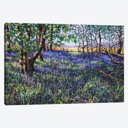 Bluebell Wood Canvas Print #ZEN11} by Zoe Elizabeth Norman Canvas Art Print