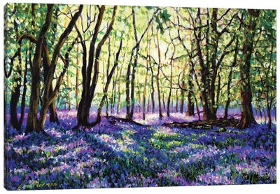 Bluebell Glade Canvas Art Print