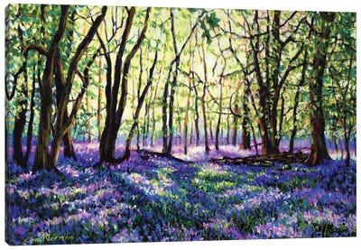 Bluebell Glade Canvas Art Print