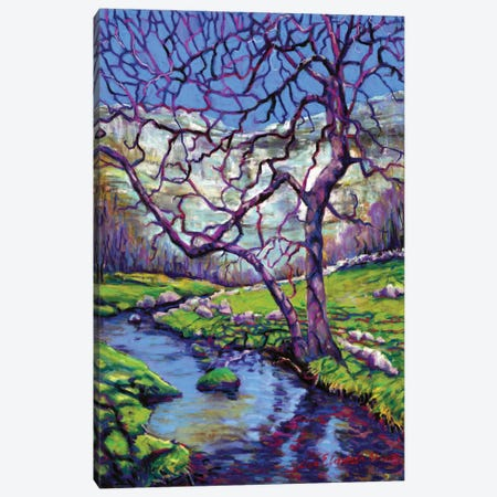 Malham Cove Canvas Print #ZEN22} by Zoe Elizabeth Norman Canvas Artwork