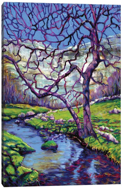 Malham Cove Canvas Art Print