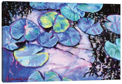 Water Lily Study In Blue Canvas Art Print