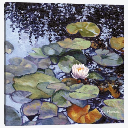 Water Lily At Giverny Canvas Print #ZEN24} by Zoe Elizabeth Norman Canvas Print