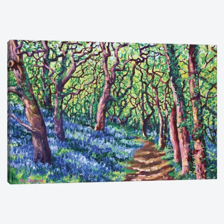 Cornish Bluebells Canvas Print #ZEN29} by Zoe Elizabeth Norman Canvas Art