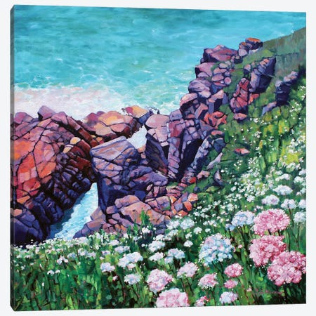 Cornish Cliffs Canvas Print #ZEN30} by Zoe Elizabeth Norman Canvas Print