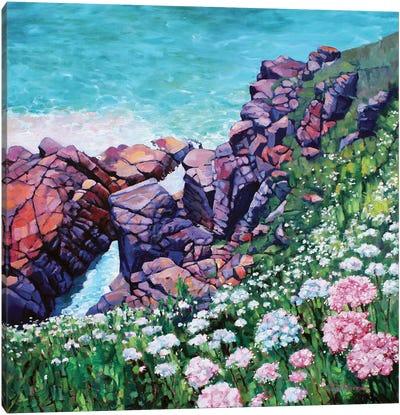 Cornish Cliffs Canvas Art Print