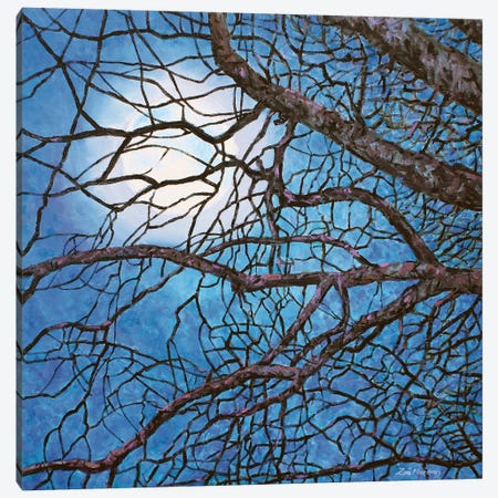 Moonlight Sonata Canvas Print #ZEN42} by Zoe Elizabeth Norman Canvas Art