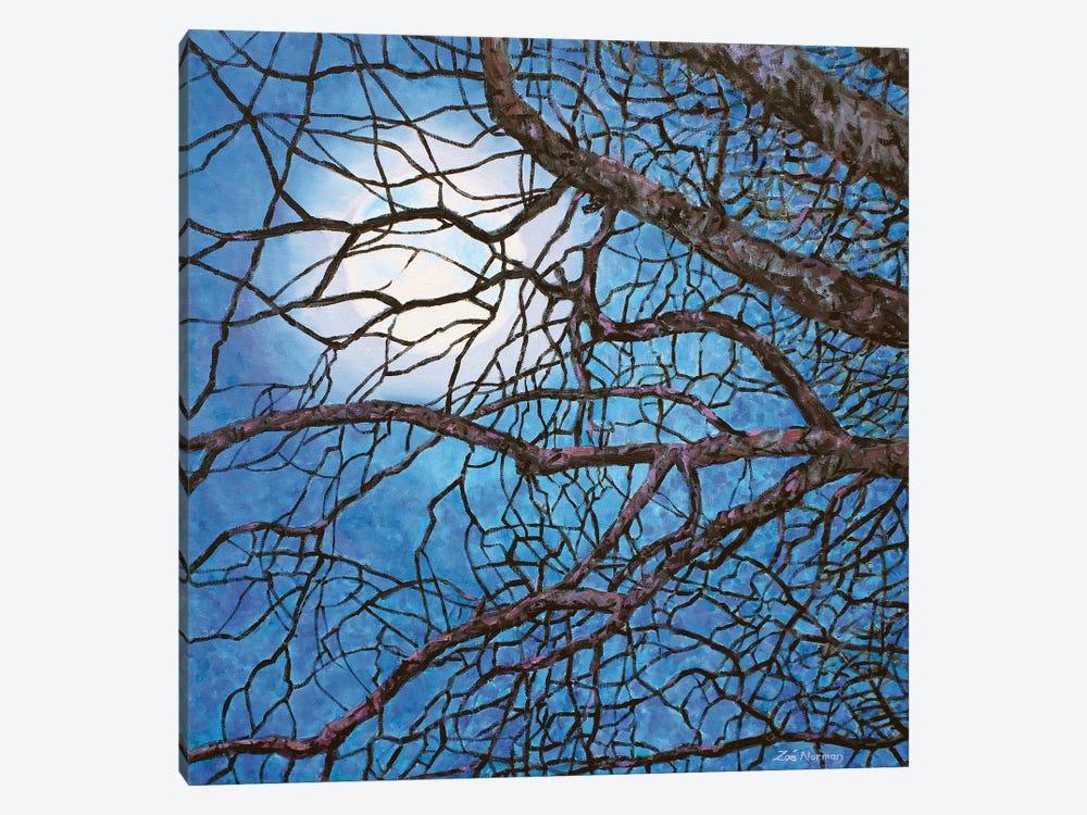 Moonlight Sonata by Zoe Elizabeth Norman 1-piece Canvas Print