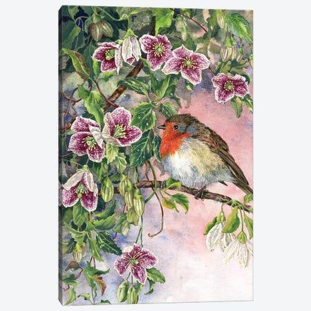 Robin And Winter Clematis Canvas Print #ZEN48} by Zoe Elizabeth Norman Canvas Art