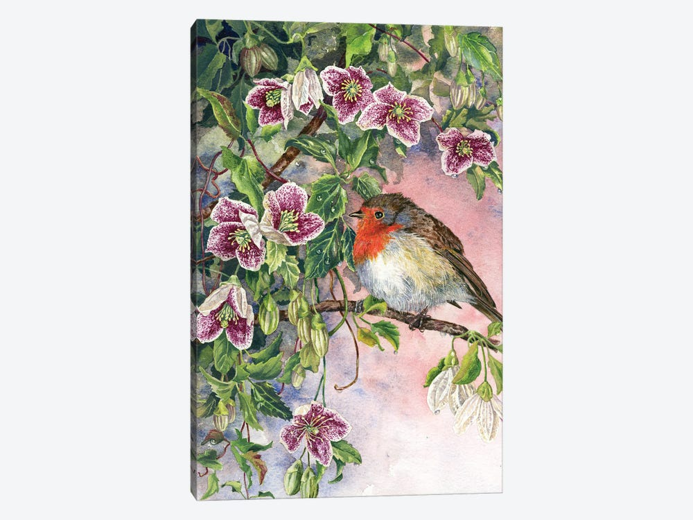 Robin And Winter Clematis by Zoe Elizabeth Norman 1-piece Art Print