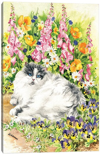 Persian Cat And Pansies Canvas Art Print