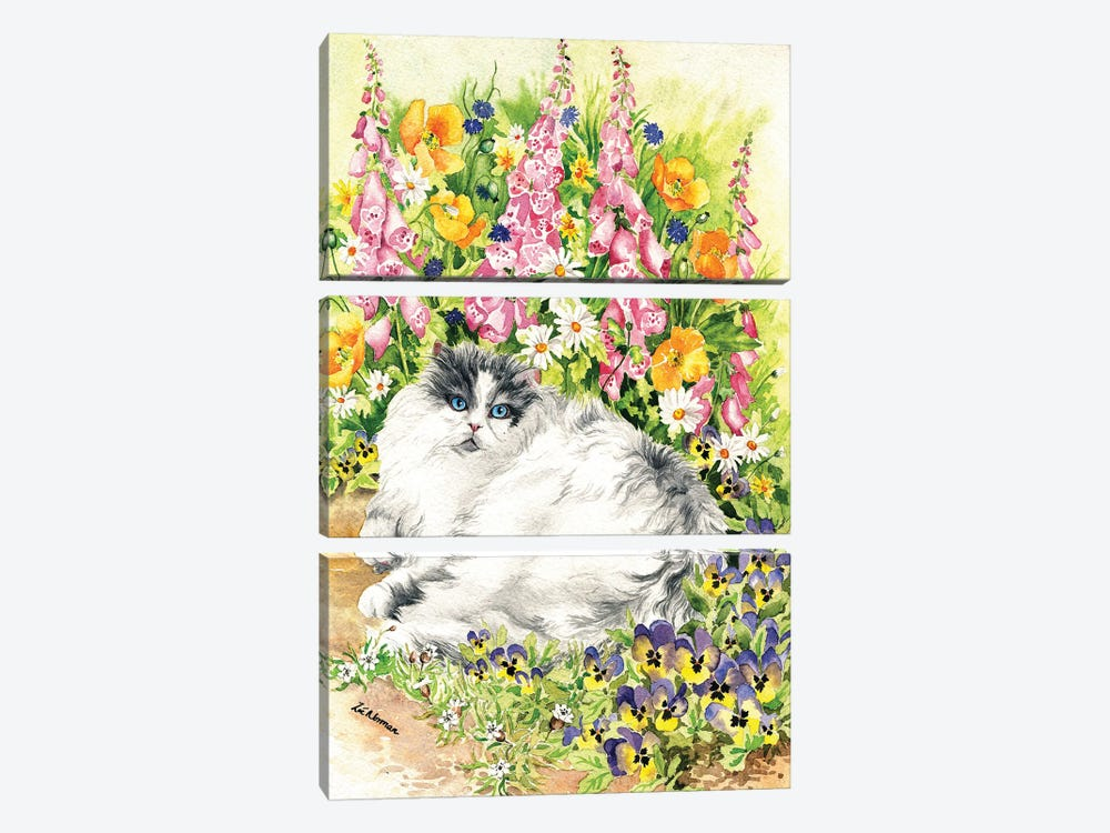 Persian Cat And Pansies by Zoe Elizabeth Norman 3-piece Canvas Art
