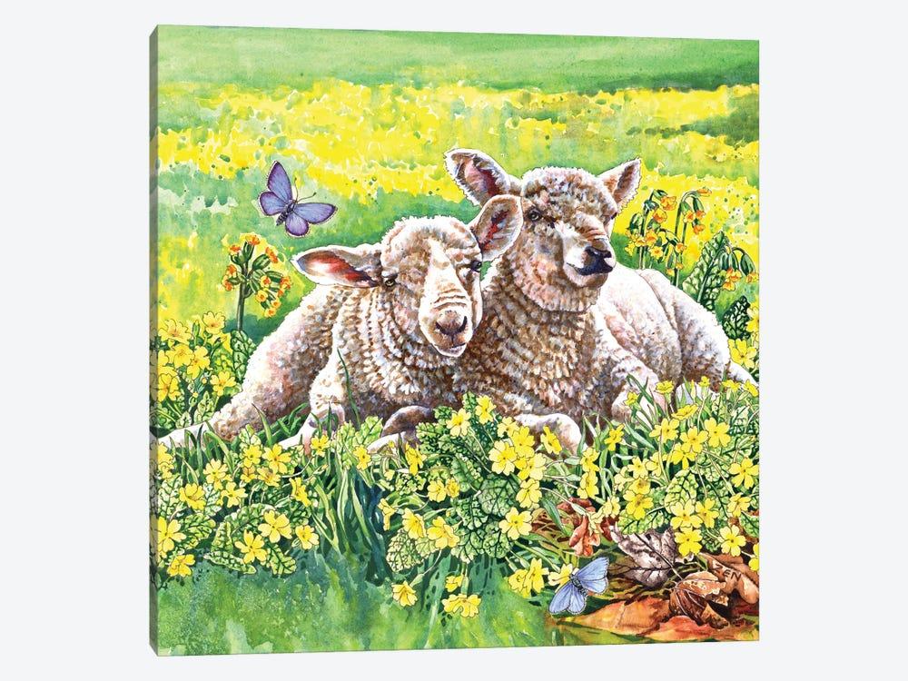 Spring Lambs by Zoe Elizabeth Norman 1-piece Art Print