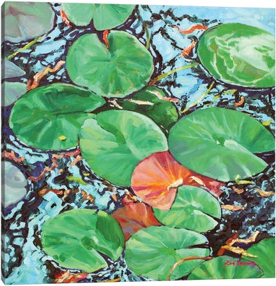Water Lily Pads Canvas Art Print