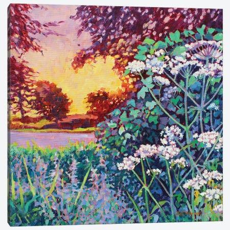 Autumn Light Canvas Print #ZEN7} by Zoe Elizabeth Norman Canvas Wall Art