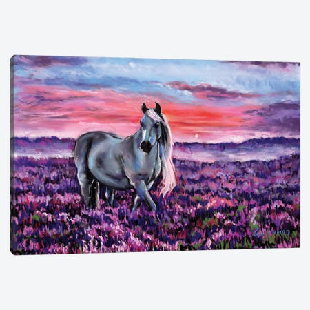 Welsh Pony Canvas Print #ZEN85} by Zoe Elizabeth Norman Canvas Art Print