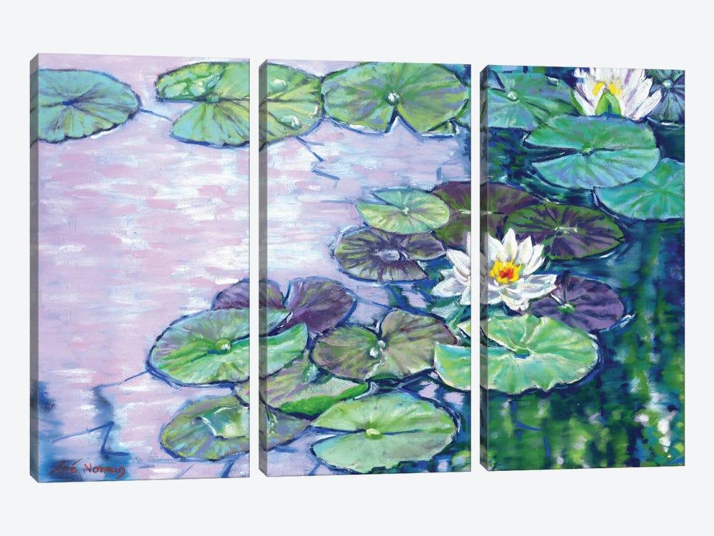 White Water Lilies by Zoe Elizabeth Norman 3-piece Canvas Artwork