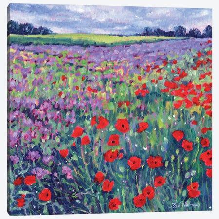 Poppy Flower Meadow Canvas Print #ZEN98} by Zoe Elizabeth Norman Art Print