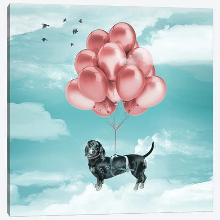 Sausage Dog Balloons Canvas Print #ZEP100} by Vin Zzep Canvas Art