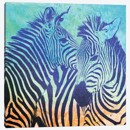 Teal Zebras Canvas Print #ZEP101} by Vin Zzep Canvas Wall Art